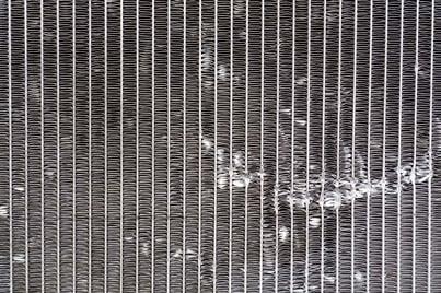 Filter - pollen web